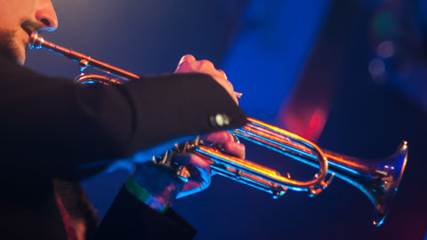 Get a flavour of the EFG London Jazz Festival 2016 with these five picks of the festival
