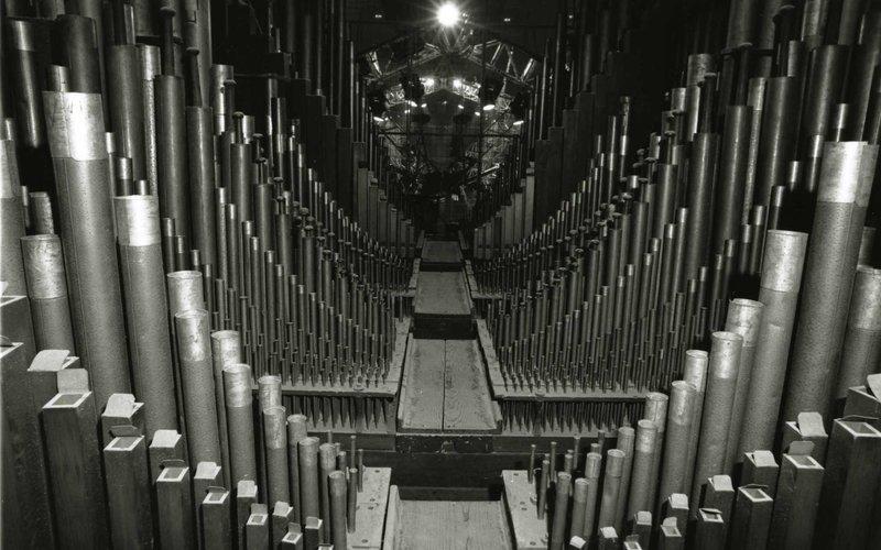 jpg(Organ