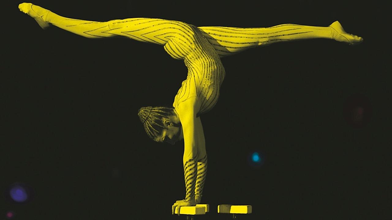 Cirque du Soleil exhibition image