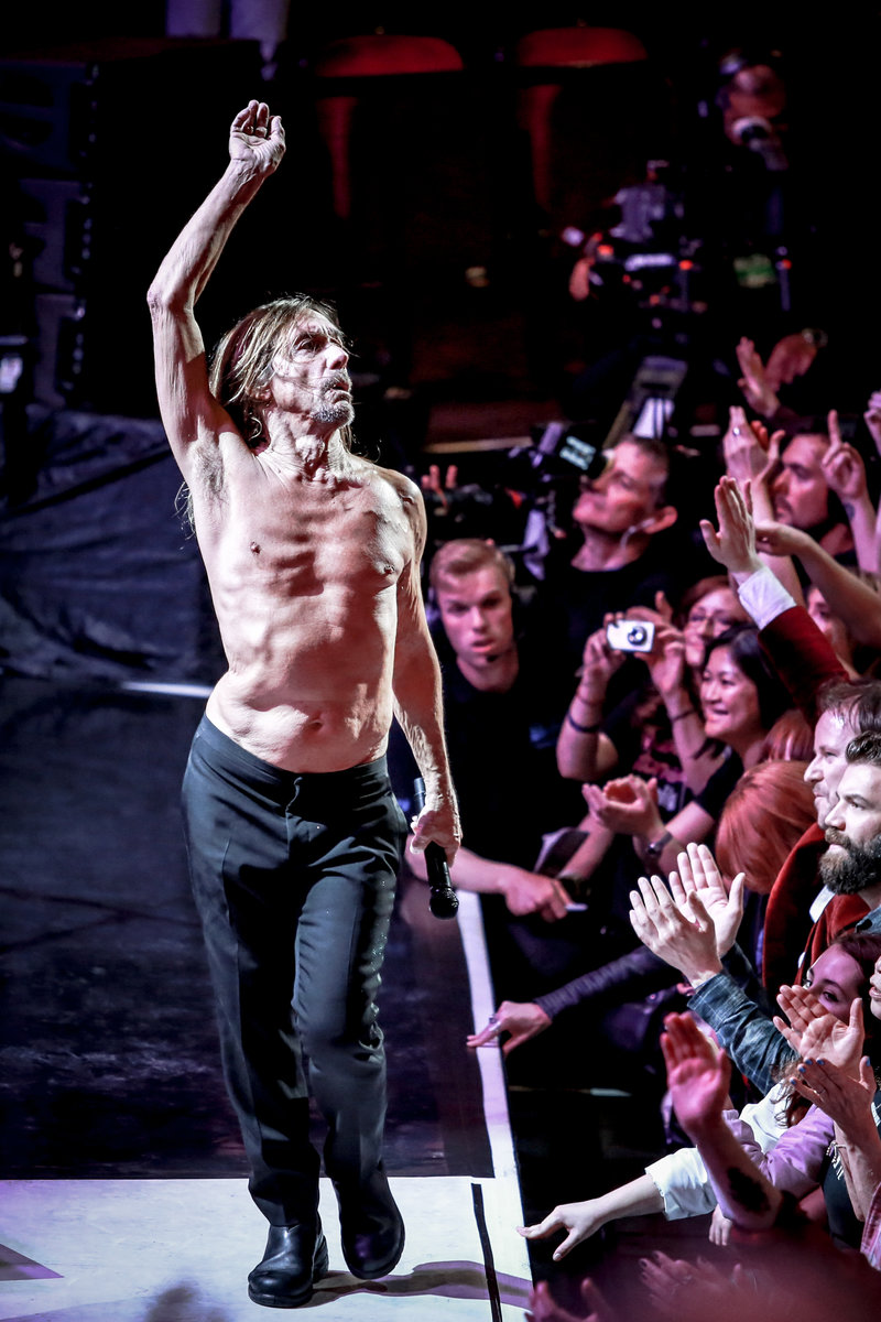 Iggy Pop © Christie Goodwin