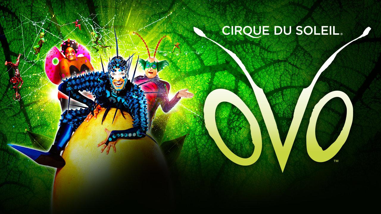 noel 2018 au soleil Cirque du Soleil   OVO | Royal Albert Hall — Royal Albert Hall noel 2018 au soleil