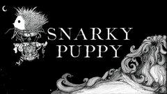 Snarky Puppy to make Royal Albert Hall debut | Royal Albert Hall